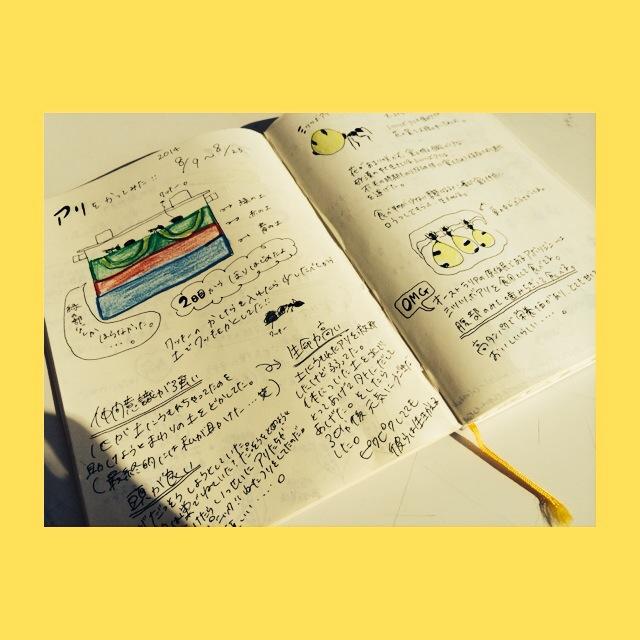 20141119_校外_onuma_tom10