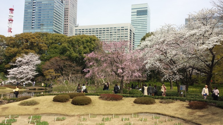 20140401_135830_Android